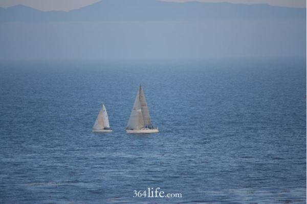sailing. 364life.com